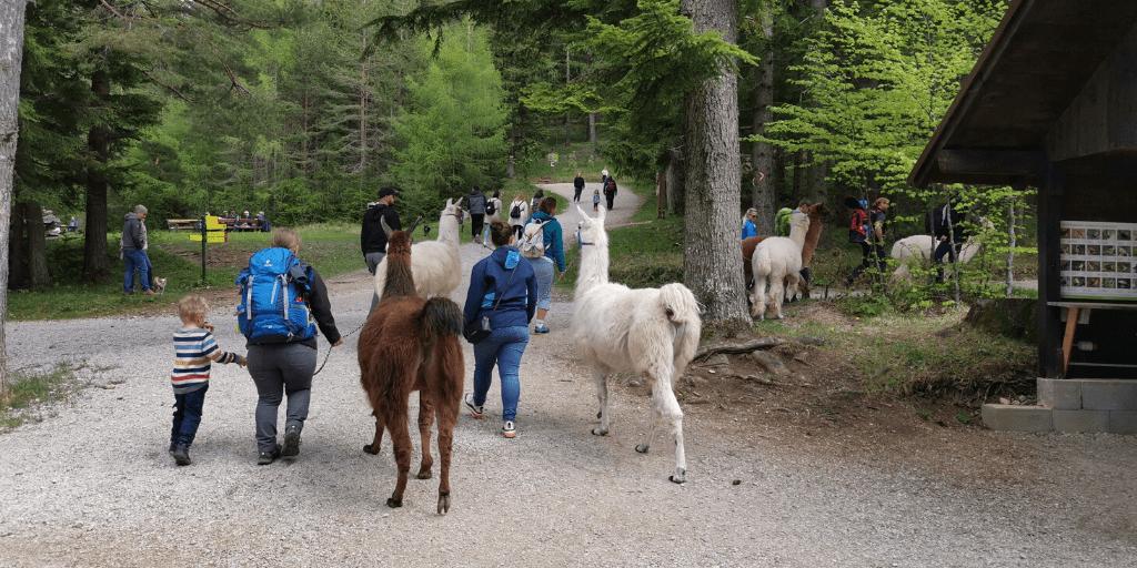 Природный парк Hohe Wand
